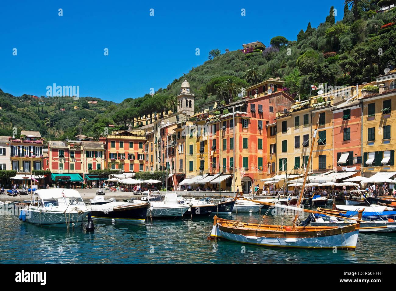 boats colorful harbor, portofino, italian riviera, genoa province, liguri, italy. - Stock Image