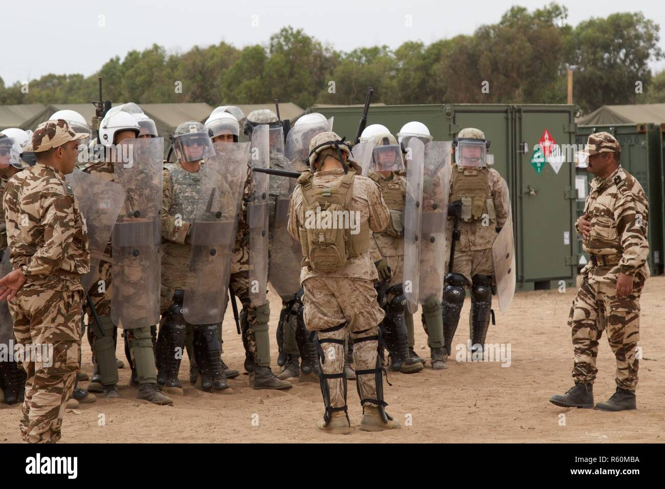 805th Military Police Company High Resolution Stock Photography And Images Alamy