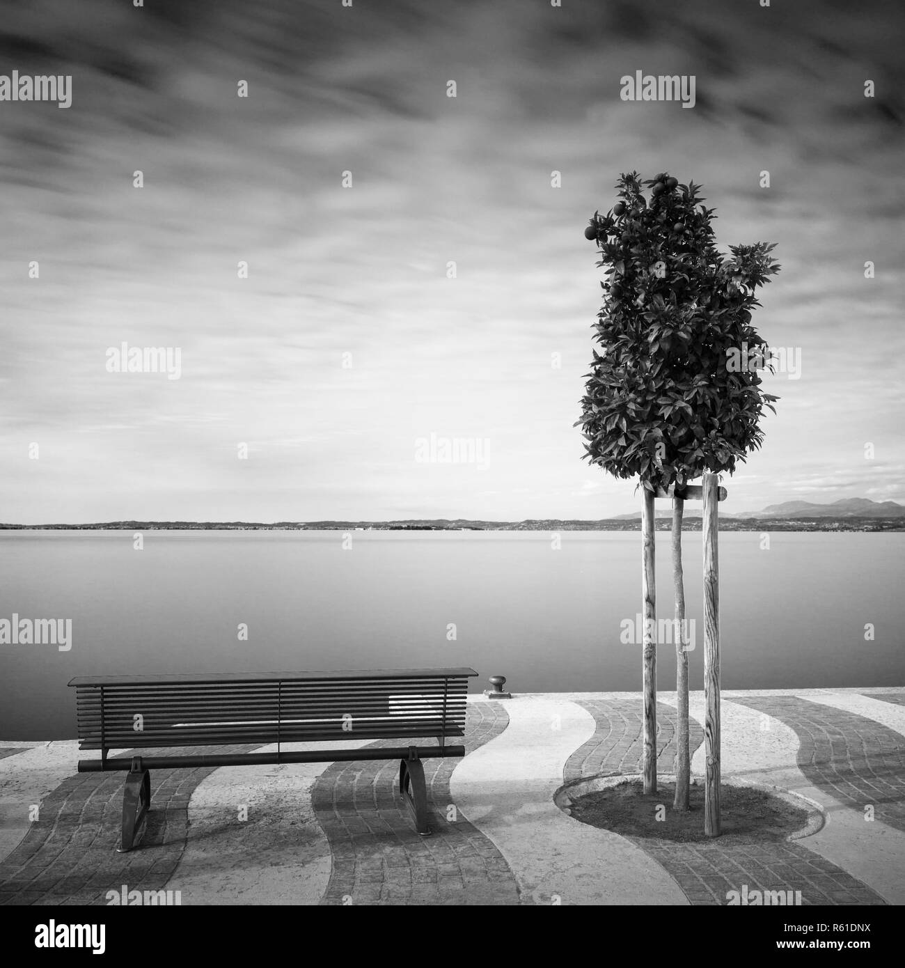 waterfront on lake garda,italy,with trees and bench - Stock Image