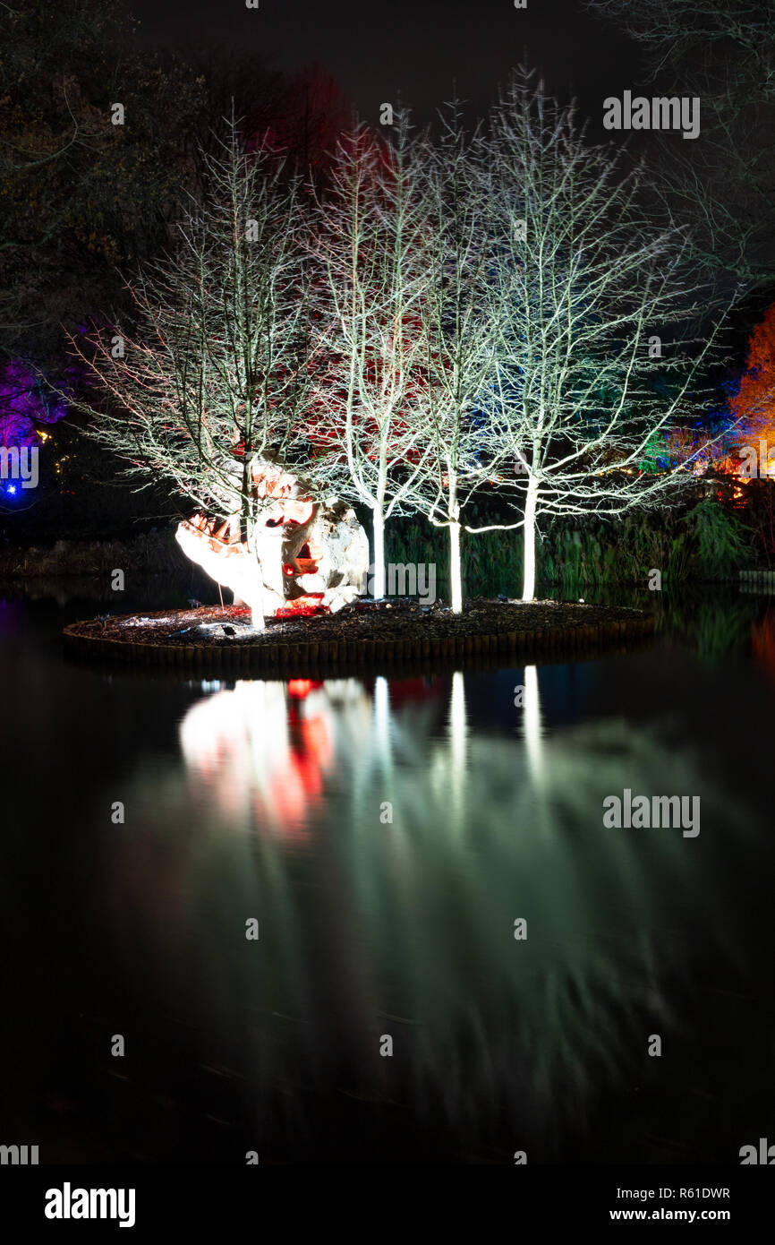 RHS Wisley Christmas Illuminations in Woking - Saturday December 1st 2018 - Stock Image