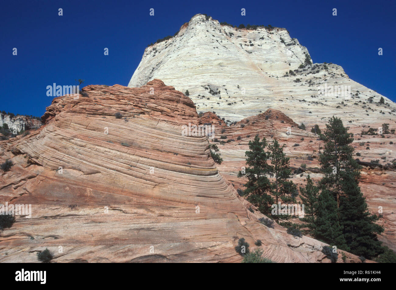 Zion in Utah, United States of America - Stock Image
