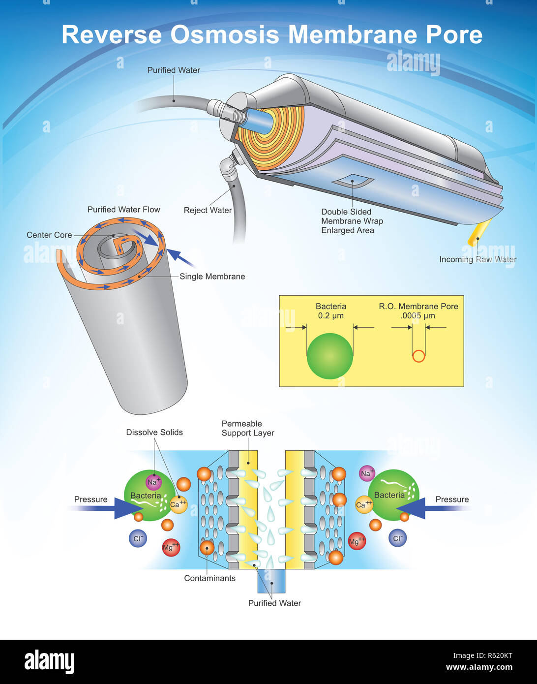 Reverse osmosis (RO) is a water purification technology that uses a semipermeable membrane to remove ions, molecules, and larger particles from drinking water. Info graphic, Illustration. - Stock Image