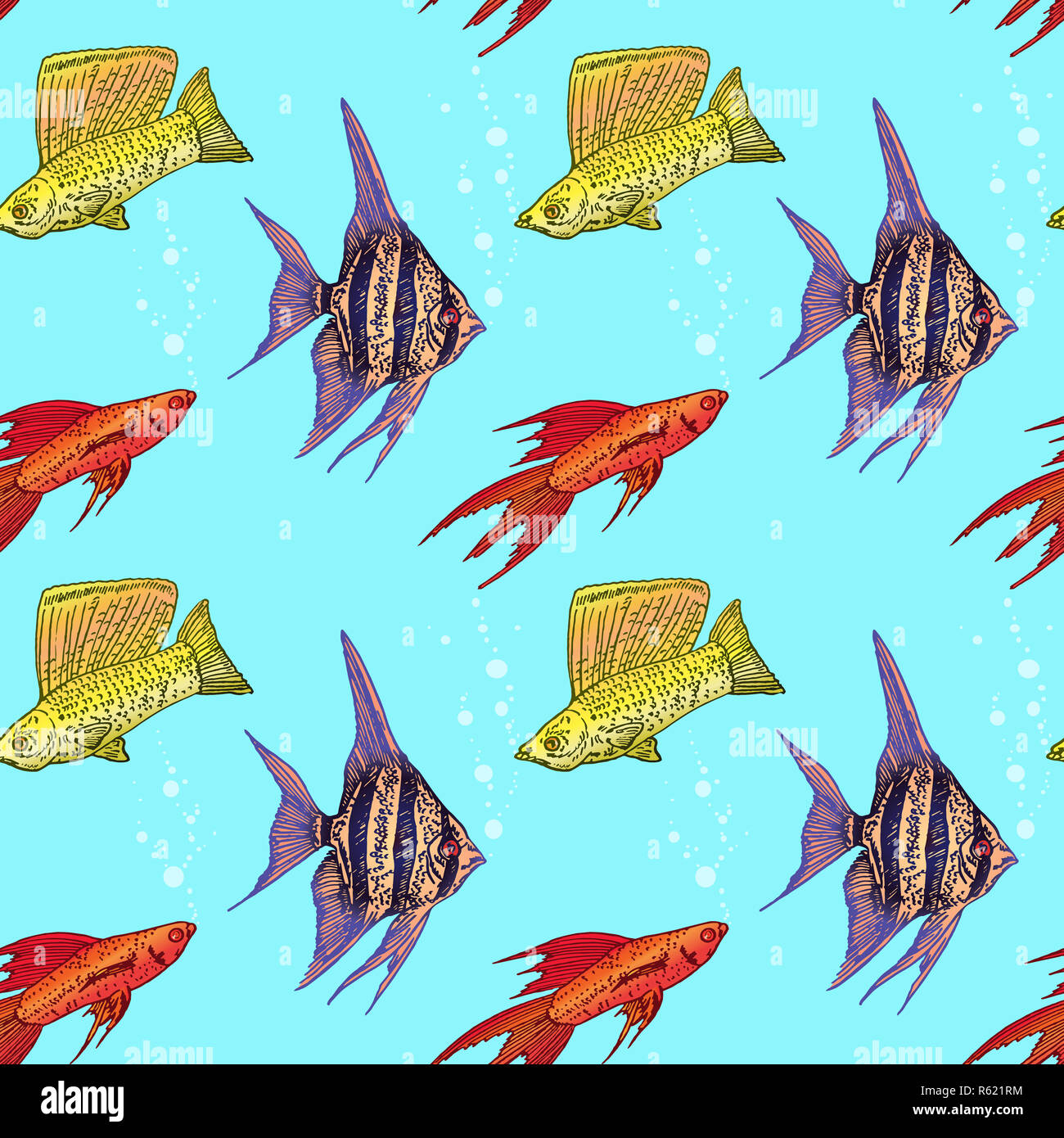 Swordtail Fish High Resolution Stock Photography And Images Alamy