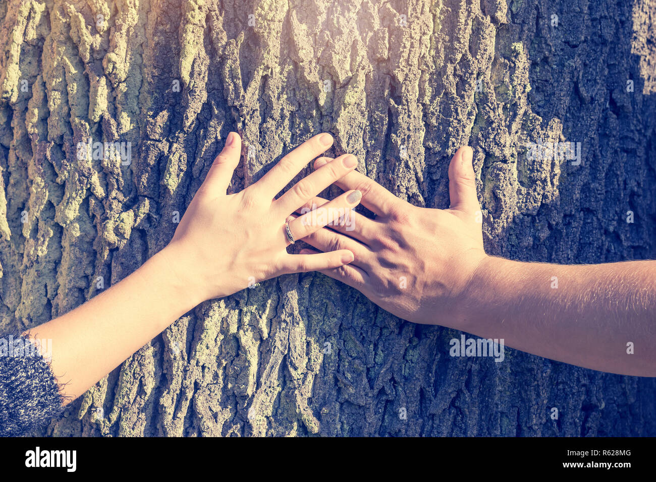 The hands of a man and a woman holding a cross on a tree trunk - Stock Image