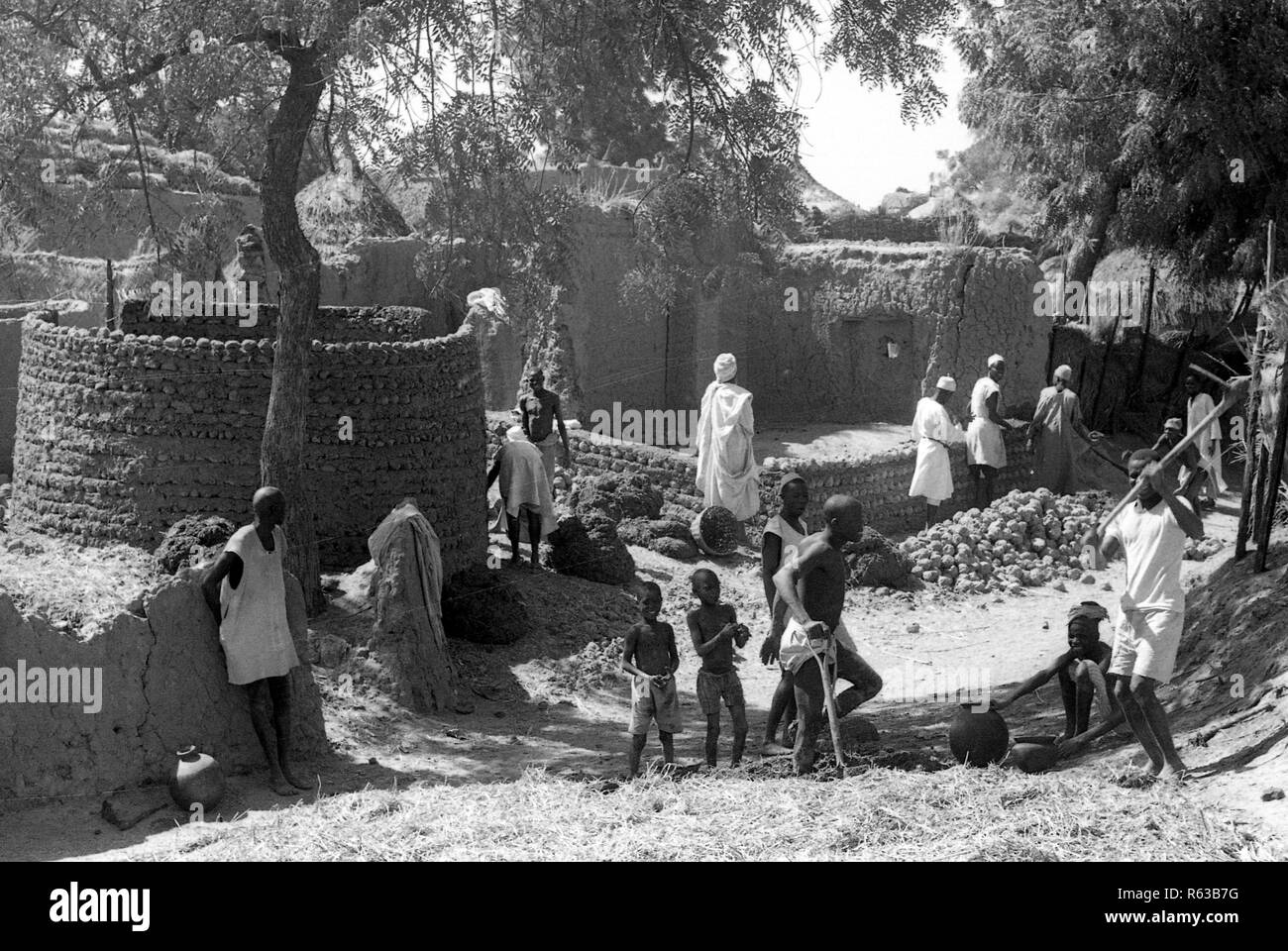 Building mud houses in Kano Nigeria Africa 1950s - Stock Image
