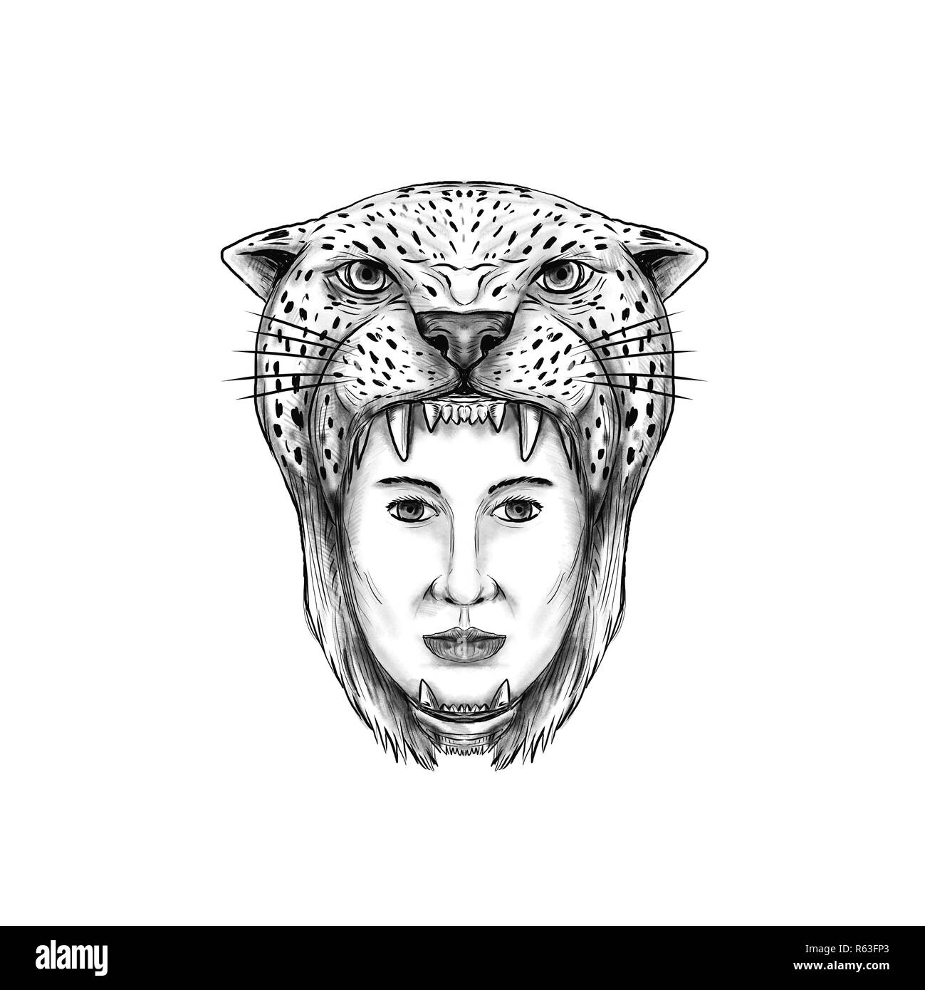 Jaguar Headdress High Resolution Stock Photography And Images Alamy
