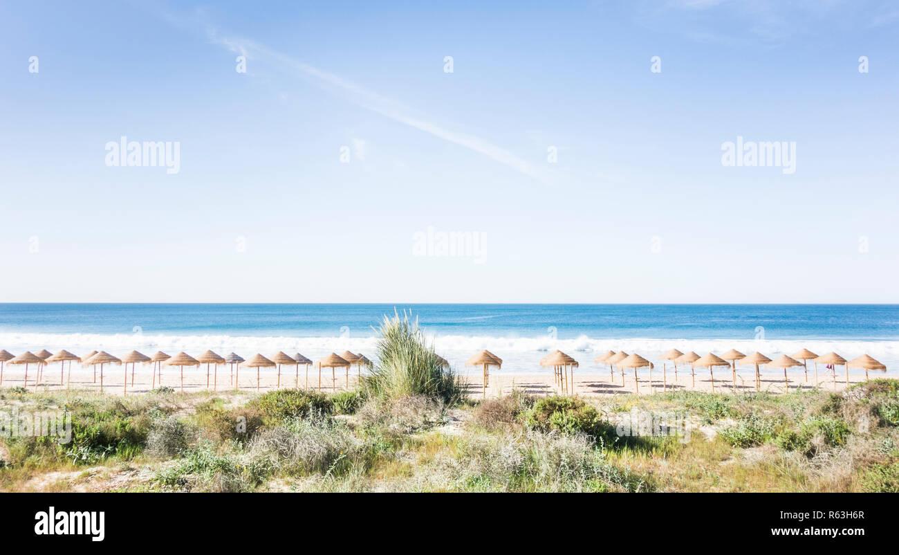 palm leaf beach umbrellas on a deserted beach seen from a dune, alvor, algarve, portugal - Stock Image