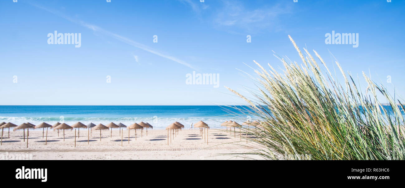palm leaf beach umbrellas on a deserted beach seen from a dune - Stock Image