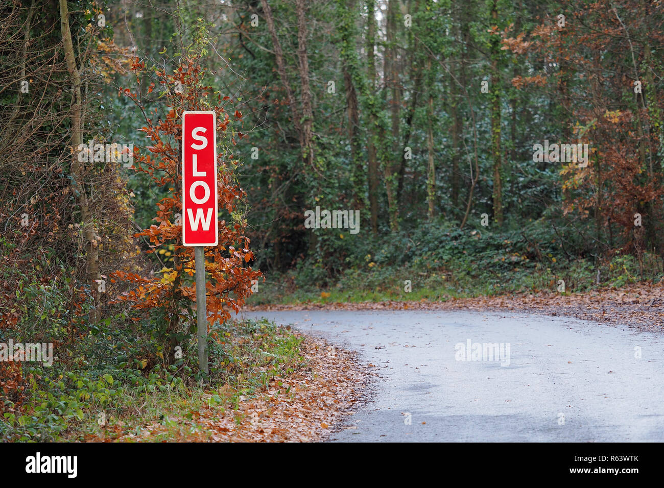 Sign advising motorists to drive slowly on narrow country lane. - Stock Image