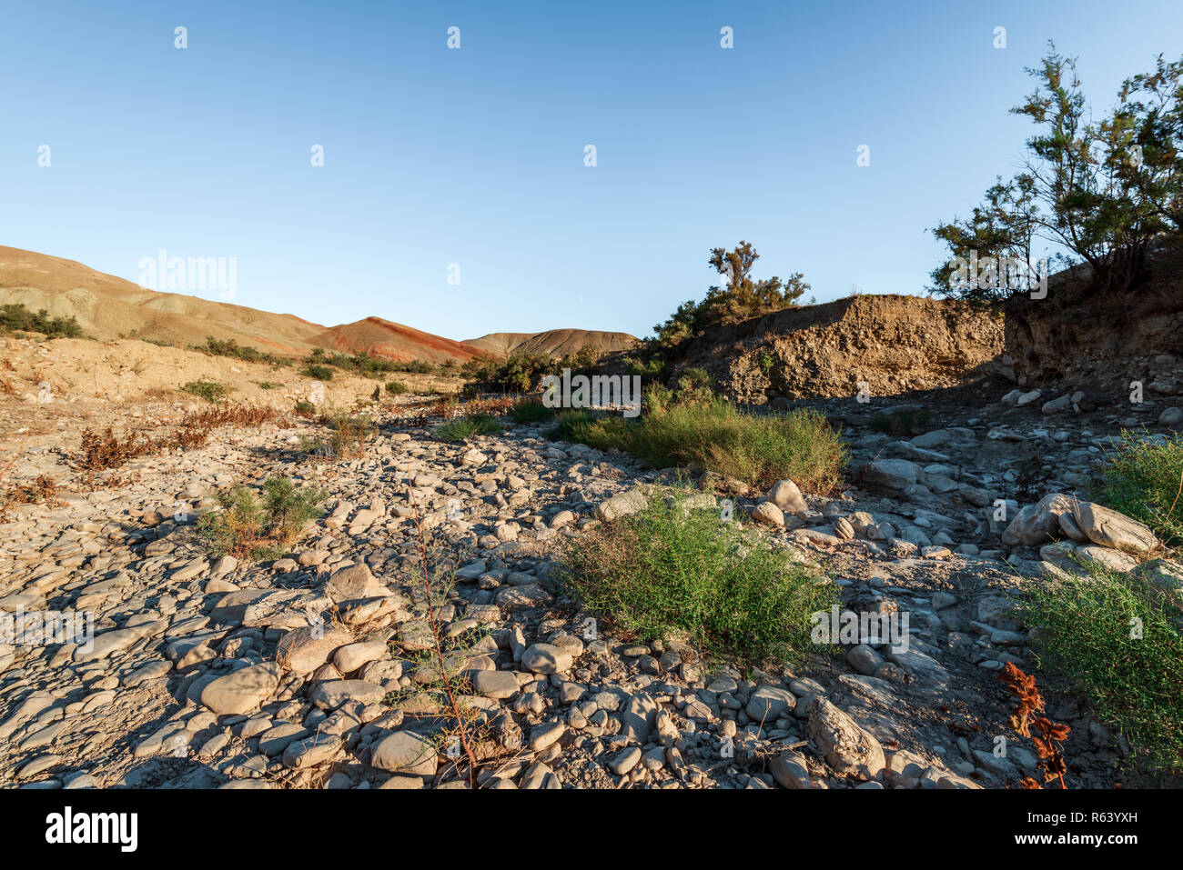 Dried riverbed of a mountain river - Stock Image