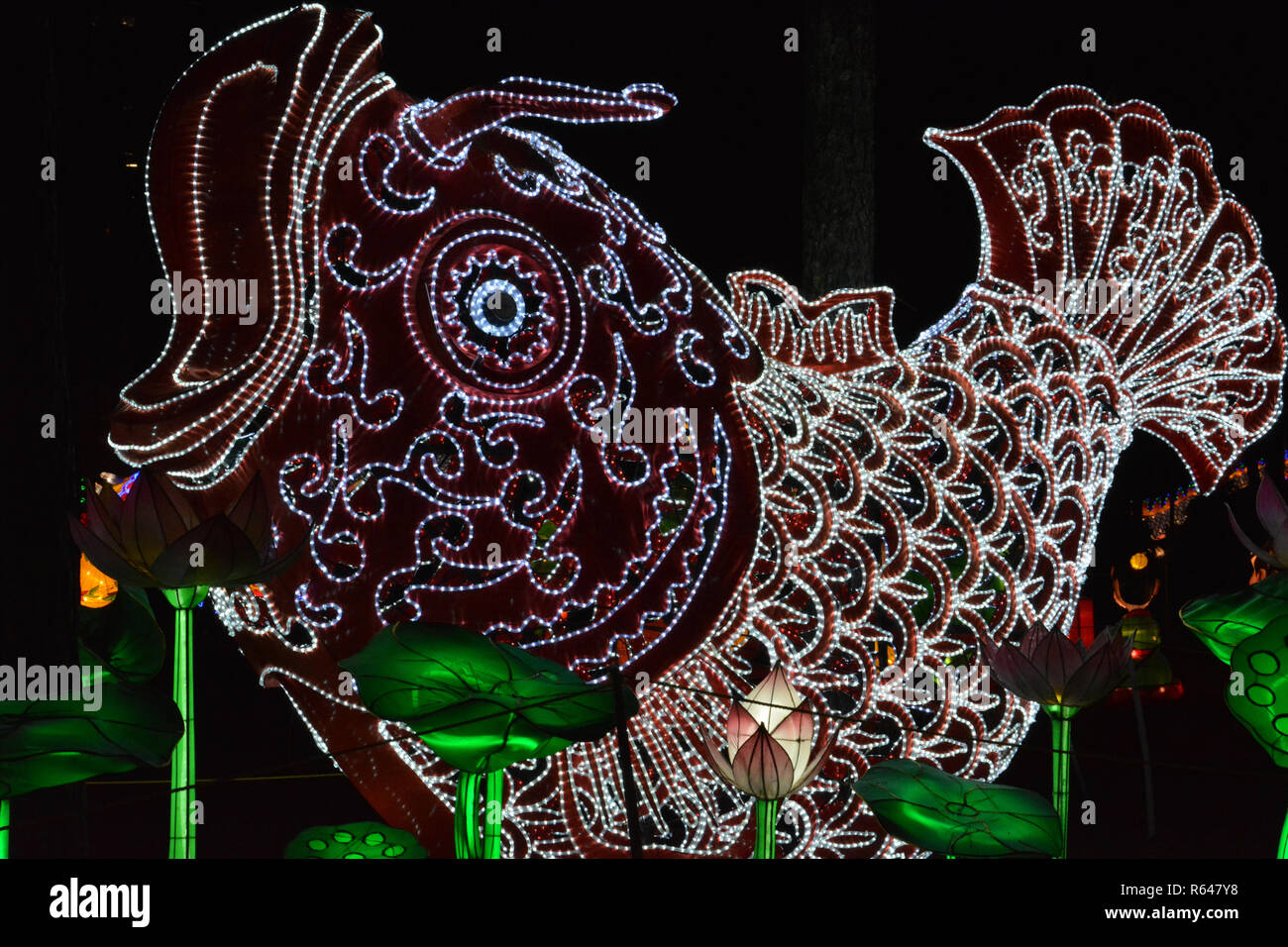 The annual North Carolina Chinese Lantern Festival held in the town of Cary, a suburb of Raleigh. - Stock Image
