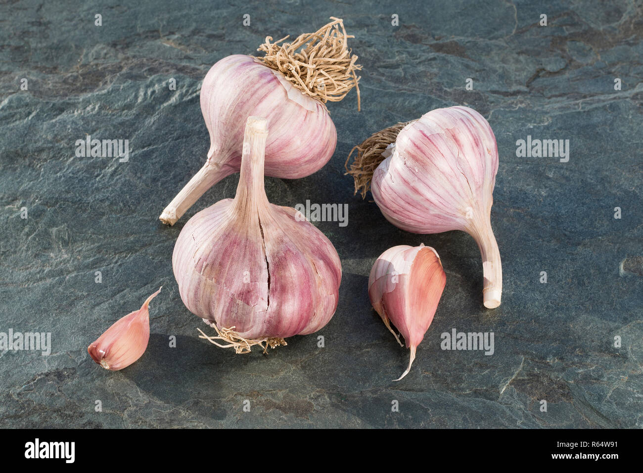 Garlic of a new harvest on the stone textured tabletop. Garlic the best drug for influenza. Concept alternative medicine, medical treatment. - Stock Image
