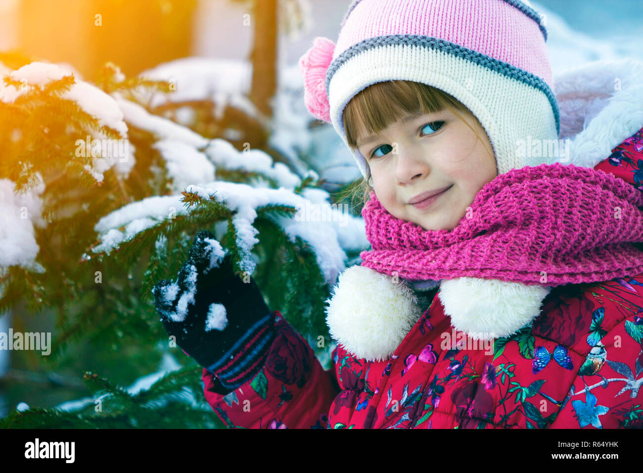 e0e25769235 Portrait of pretty little girl in winter clothes near snow covered pine tree