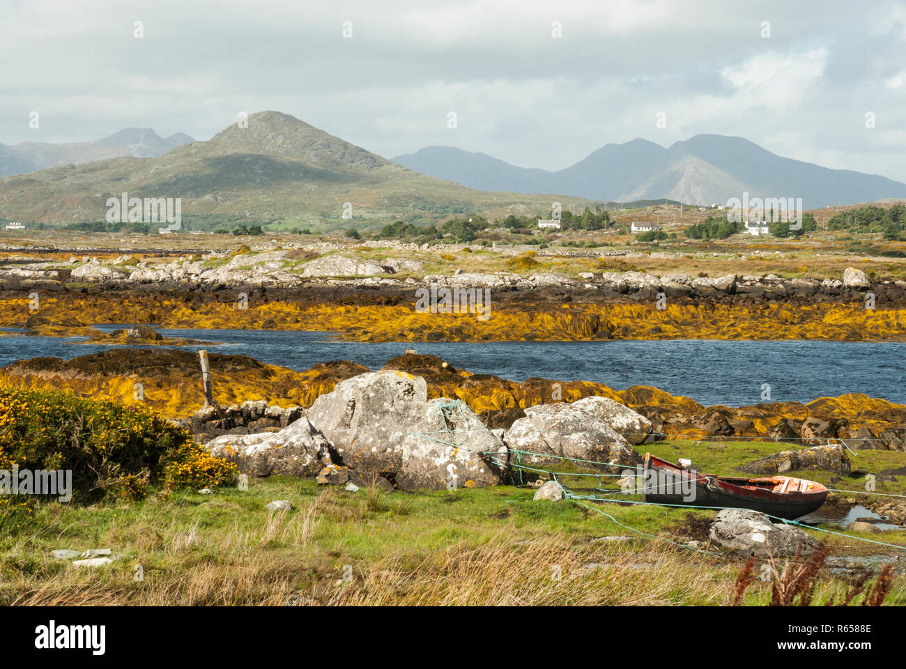 A beautiful sea inlet lined with orange seaweed; in the background the Beanna Beola mountain range of the Connemara National Park, Ireland in sunshine. - Stock Image