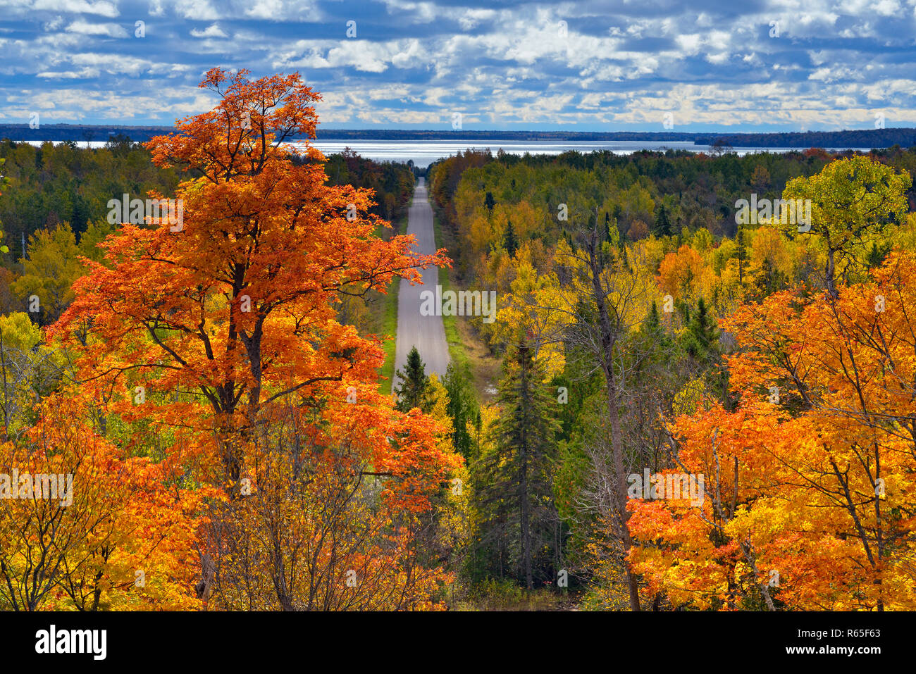Autumn maple trees overlooking Monument Road from Jerusalem Hill, Manitoulin Island, Ontario, Canada - Stock Image