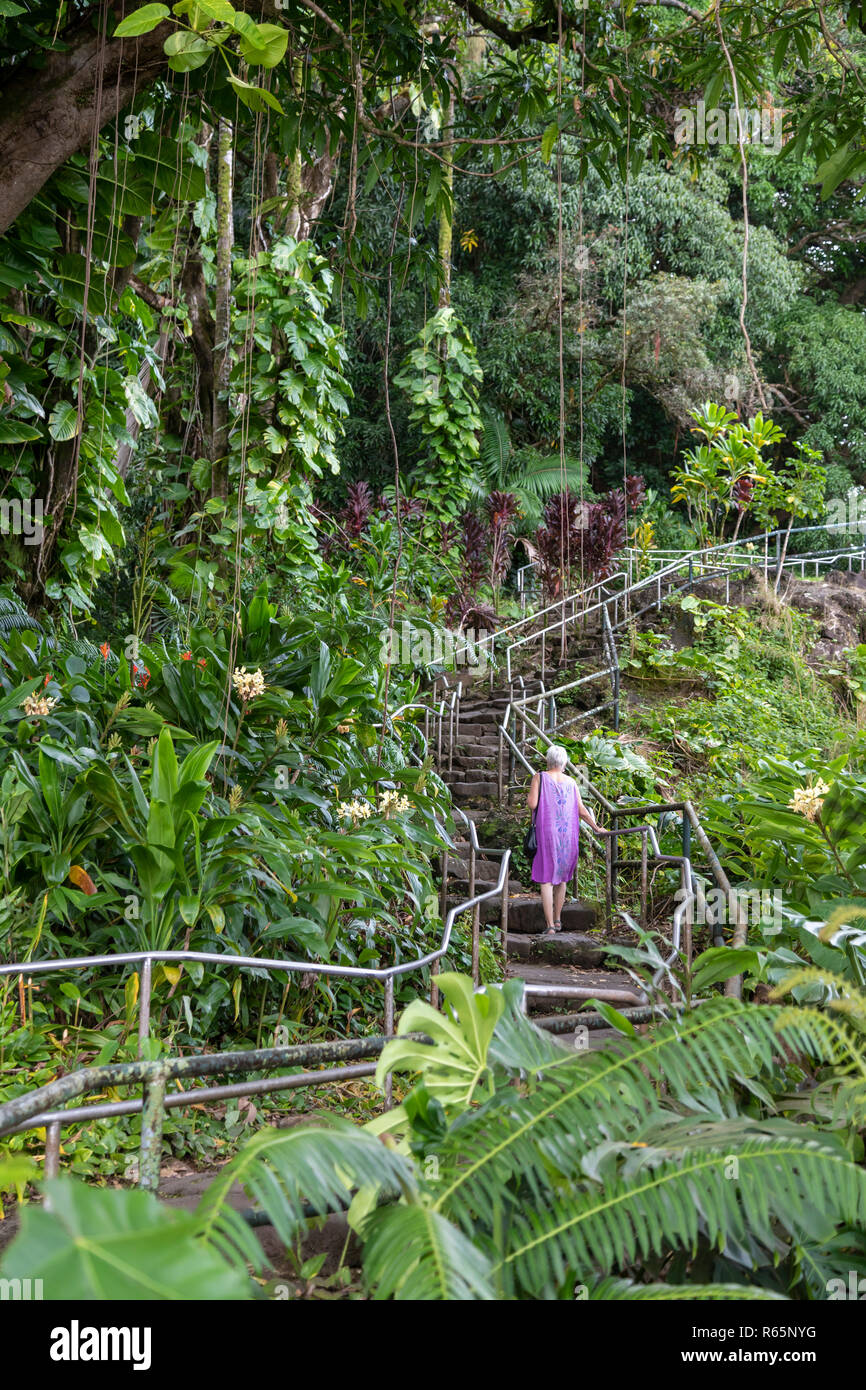 Hilo, Hawaii - A woman climbs a long flight of stairs to the top of Rainbow Falls. - Stock Image