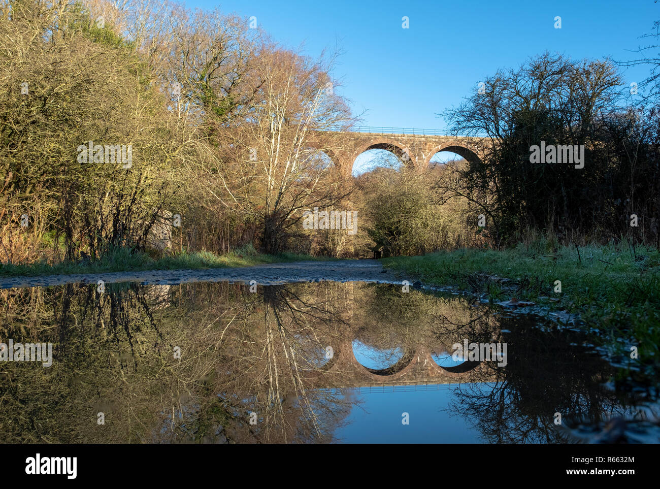 The Camps Railway viaduct, Almondell and Calderwood country park, West Lothian. - Stock Image