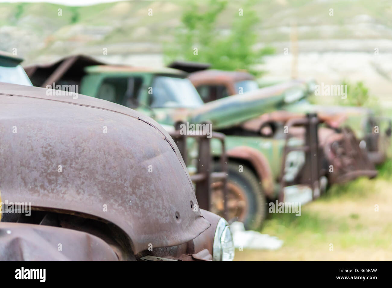 Junk car yard to recyle old and worn out vehicles - Stock Image