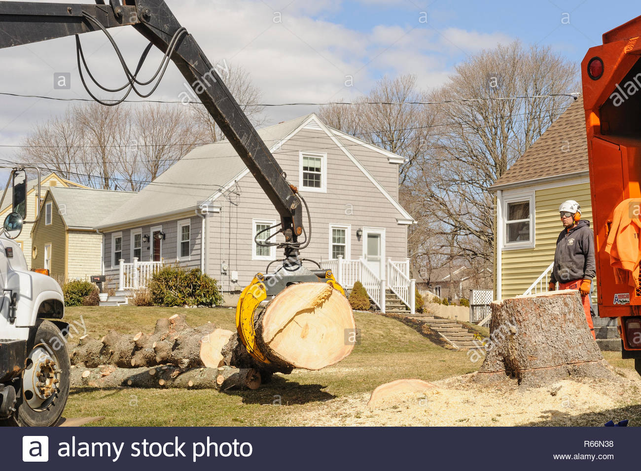 Somerset, Massachusetts, USA - March 31, 2015: Section of thick trunk of downed Norway Spruce tree being lifted toward truck for removal - Stock Image