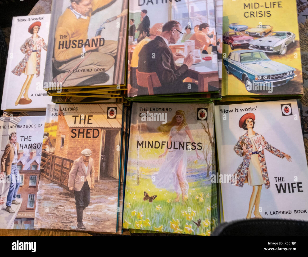 Modern Ladybird books on the husband, the wife and other social and life issues - Stock Image