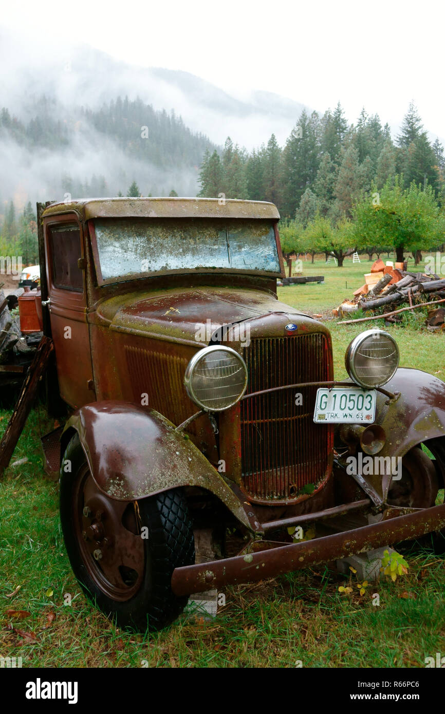 An old orchard pickup rotting away in Stehekin's historic Buckner Orchard. - Stock Image
