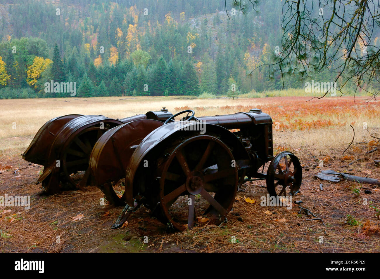Two old tractors in Stehekin's old historic Buckner Orchard. - Stock Image