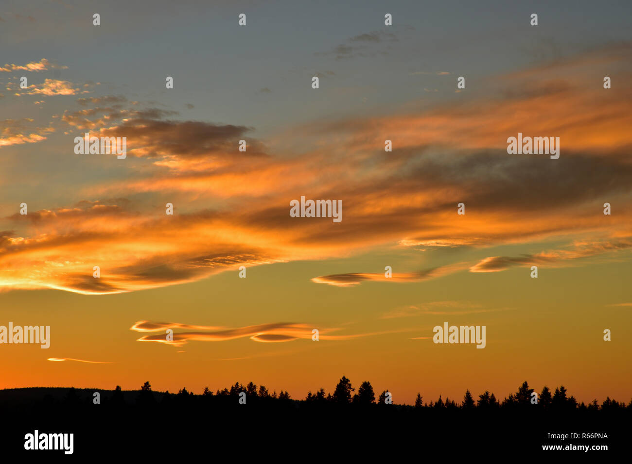Stunning Sunset - Stock Image