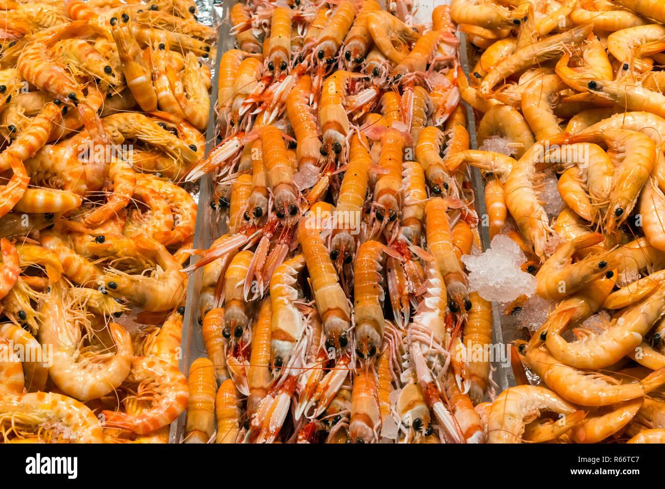Frische Garnelen zum Verkauf auf einem Markt in Madrid, Spanien Stock Photo