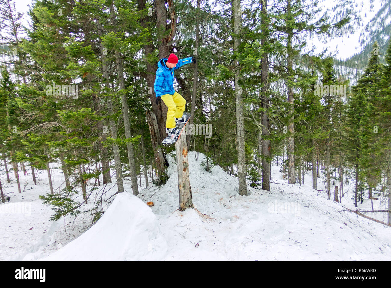 Freestyle snowboarder makes flatland standing on a log in a forest in winter mountains Stock Photo