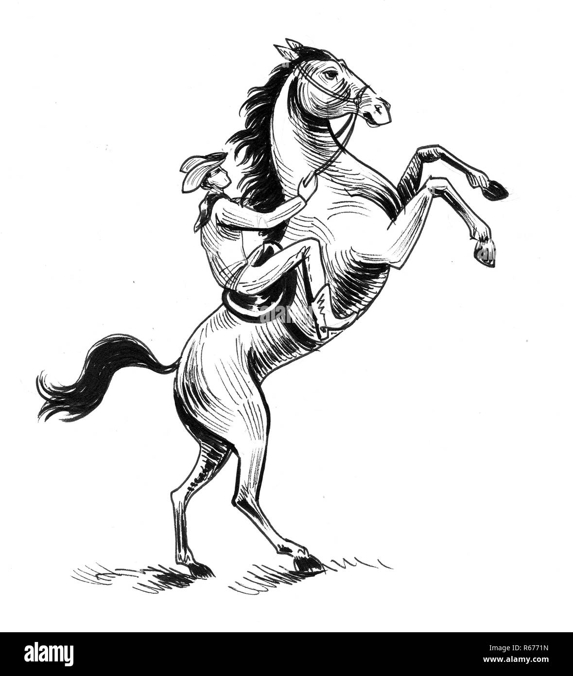 27+ Horse Riding Cartoon Black And White Background