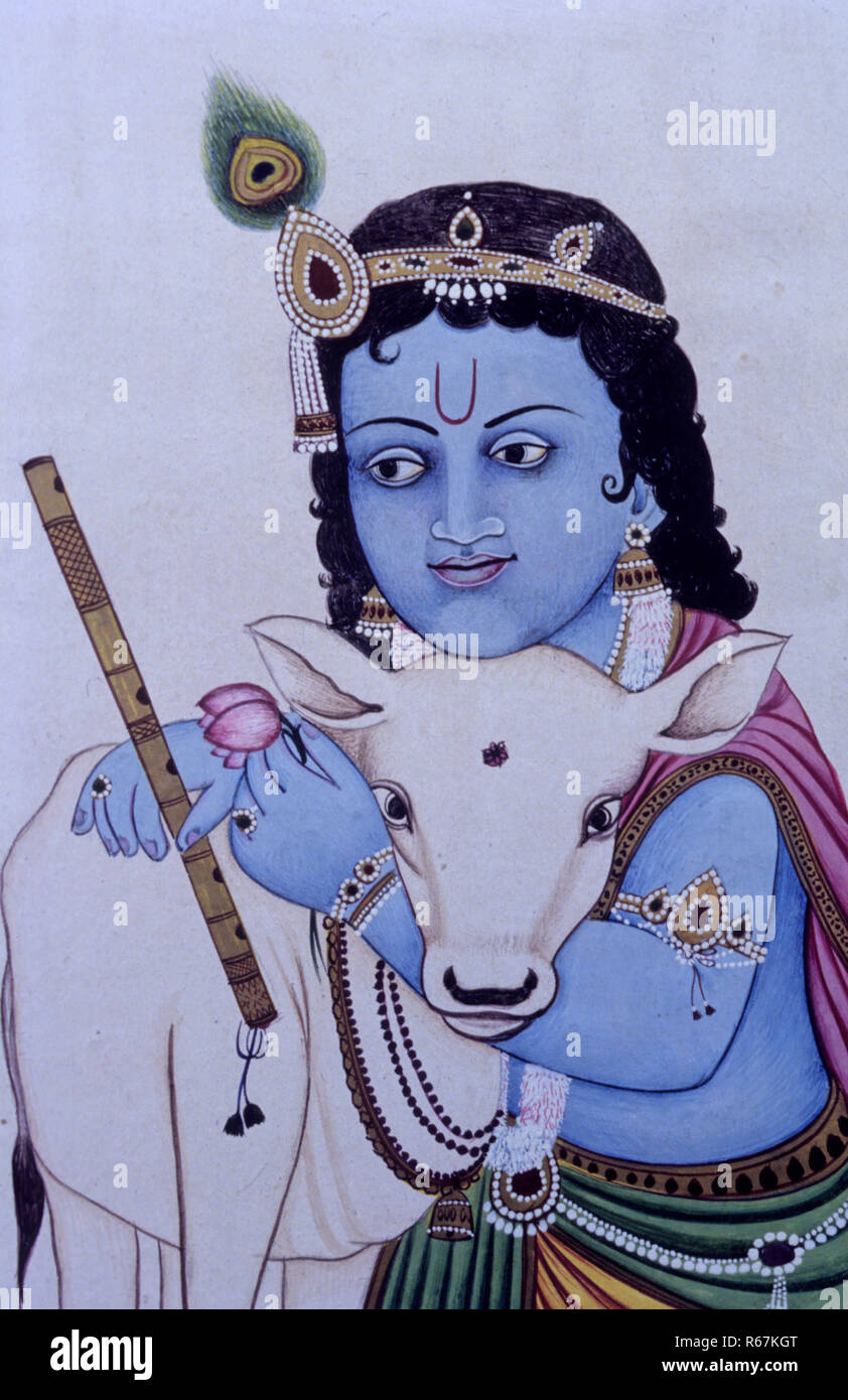 Krishna Cow High Resolution Stock Photography And Images Alamy