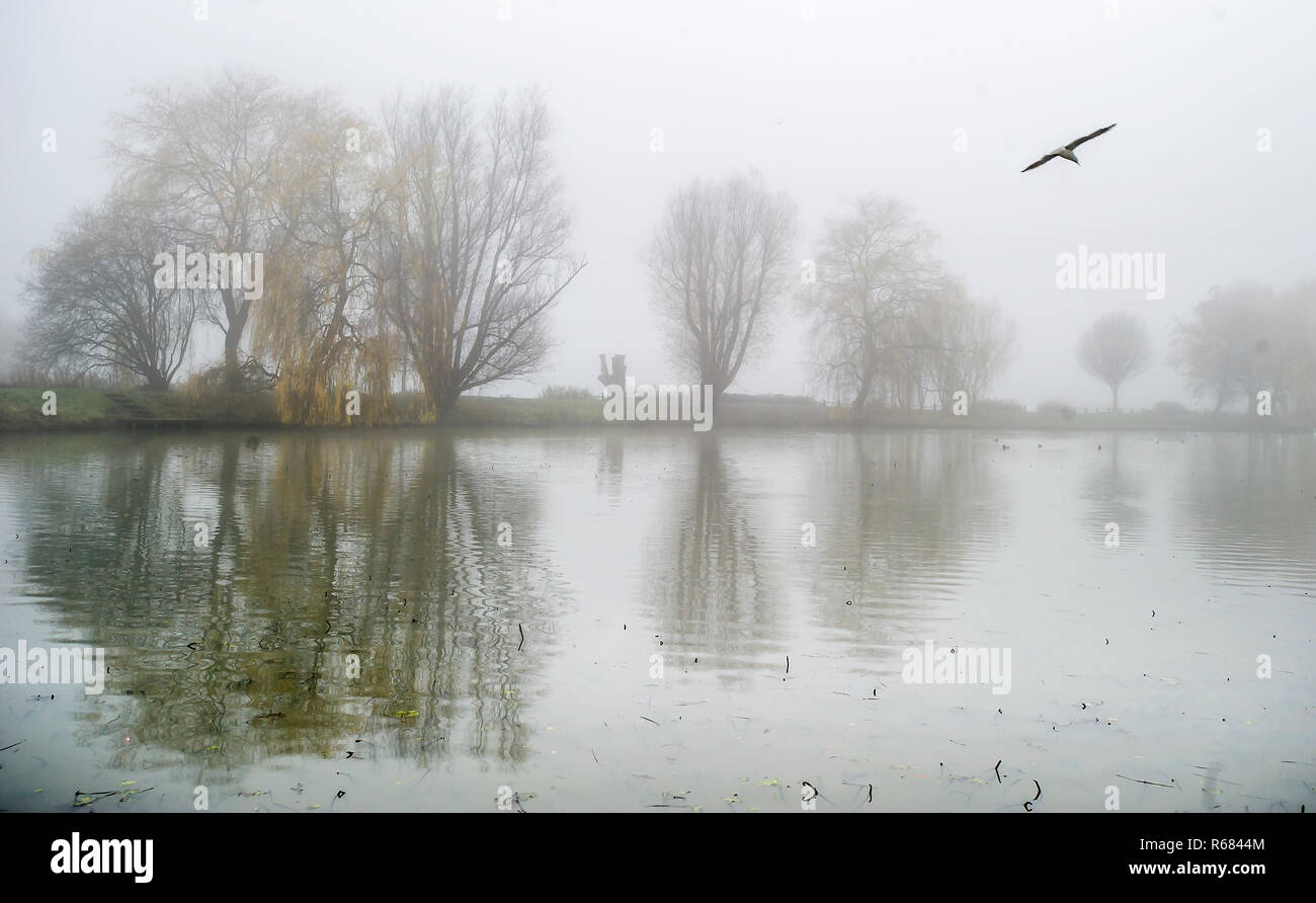 Bolton, Lancashire. 4th Dec 2018. UK Weather: Atmospheric misty scenes at Moses Gate Country Park, Bolton, Lancashire. Freezing temperatures overnight cause a widespread lingering fog over the North West of the country. Picture by Paul Heyes, Tuesday December 04, 2018. Credit: Paul Heyes/Alamy Live News Stock Photo
