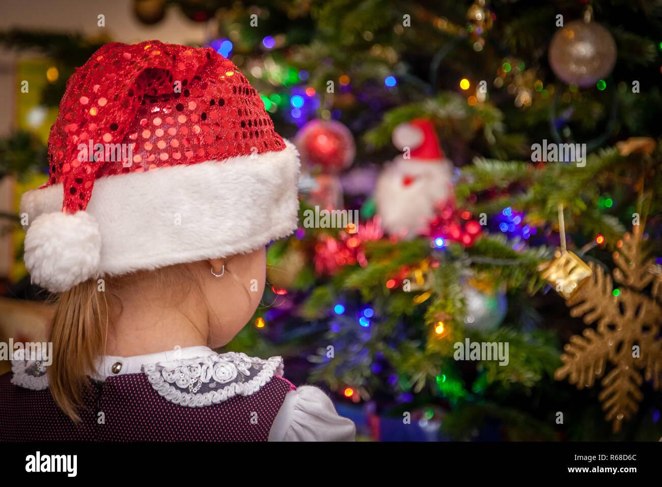 Santa Beanie Baby Stock Photos   Santa Beanie Baby Stock Images - Alamy f228b3458622