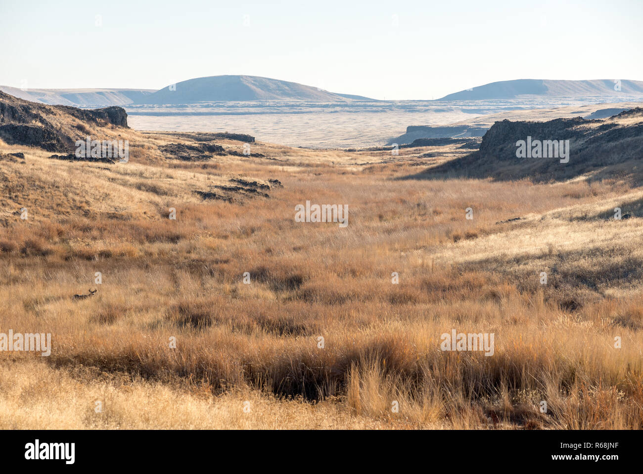 The scablands of Eastern Washington. Stock Photo