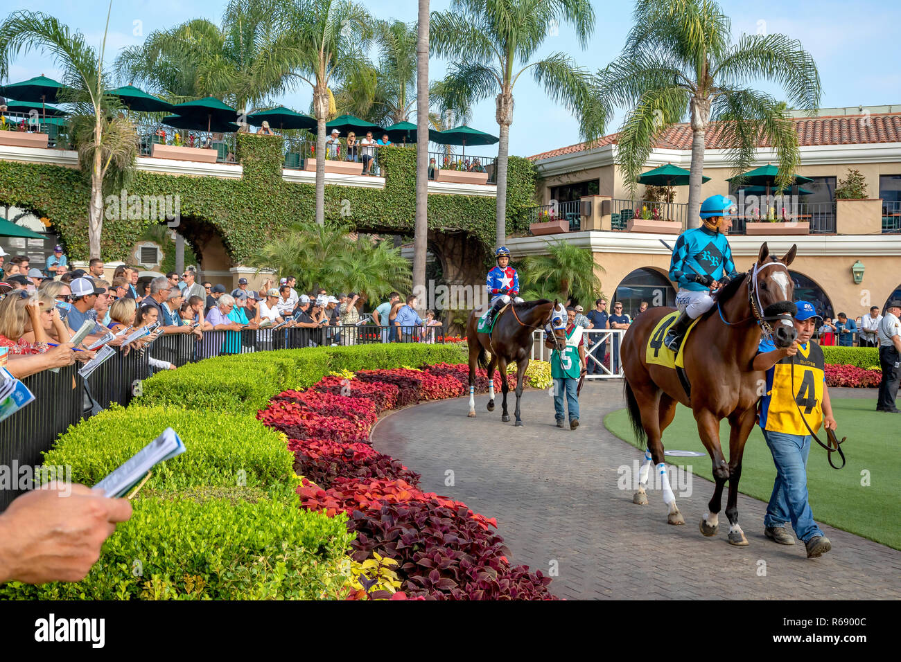 Jockeys riding their horses before the race in Del Mar, California - Stock Image