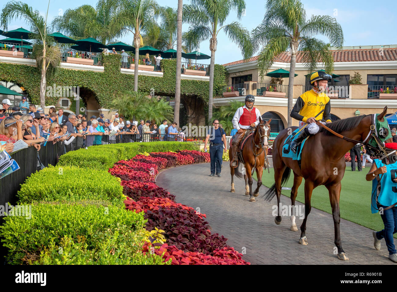 A jockey riding his horse before the race in Del Mar, California - Stock Image