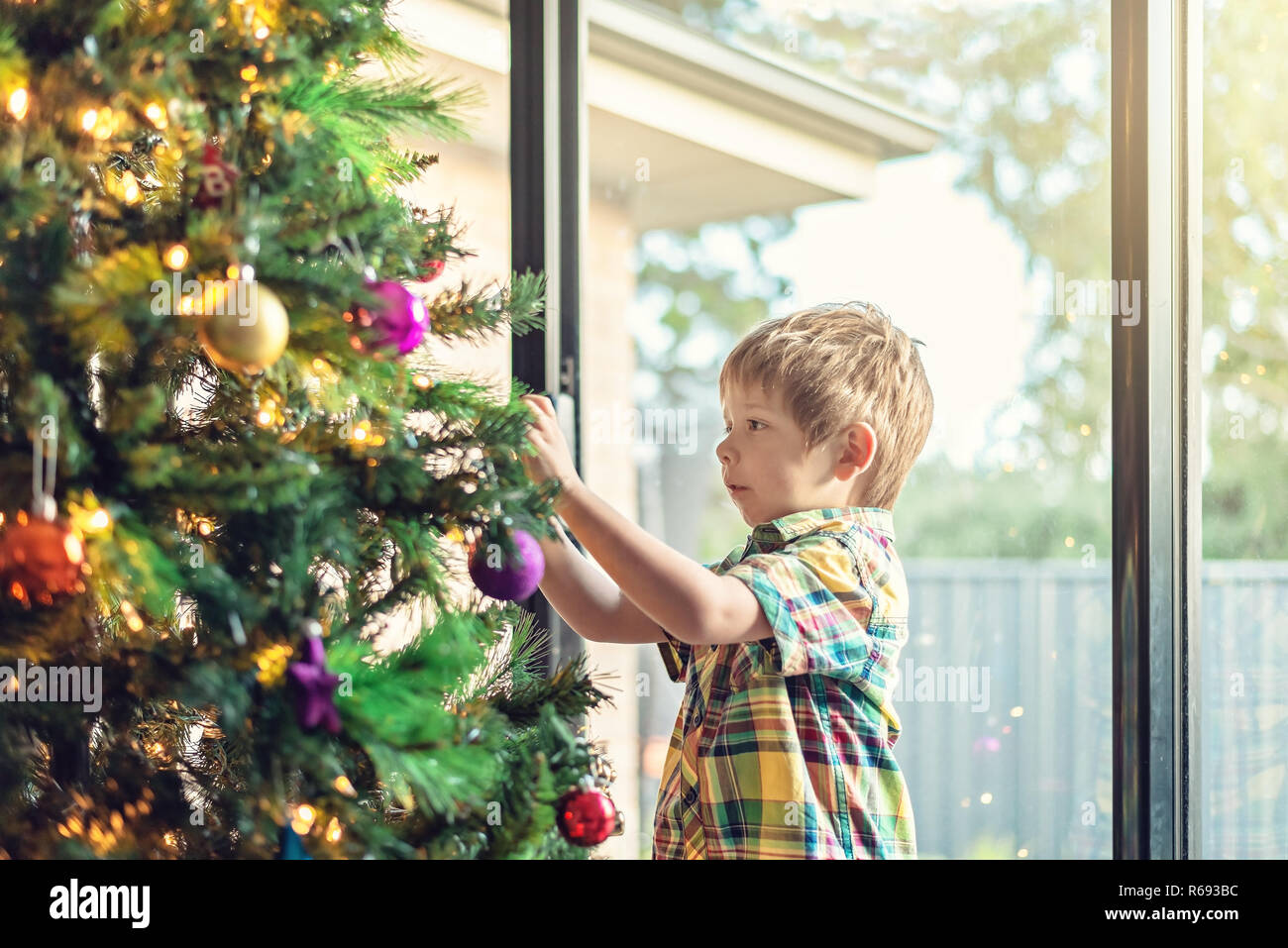 Cute little boy  decorating a Christmas tree in South Australia - Stock Image