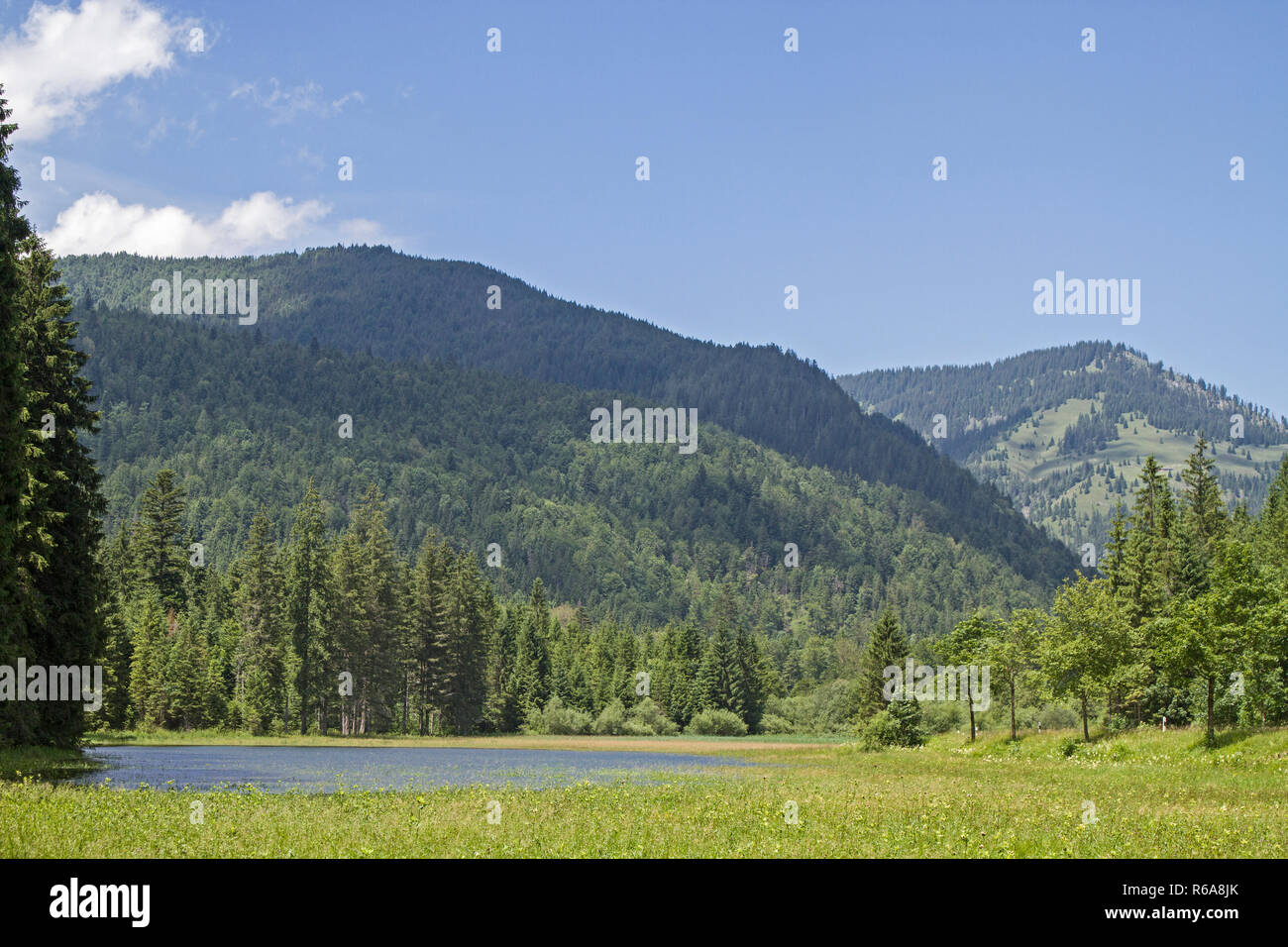 Idyllic Small Lake In Ursprungs Valley South Of Bayrischzell - Stock Image