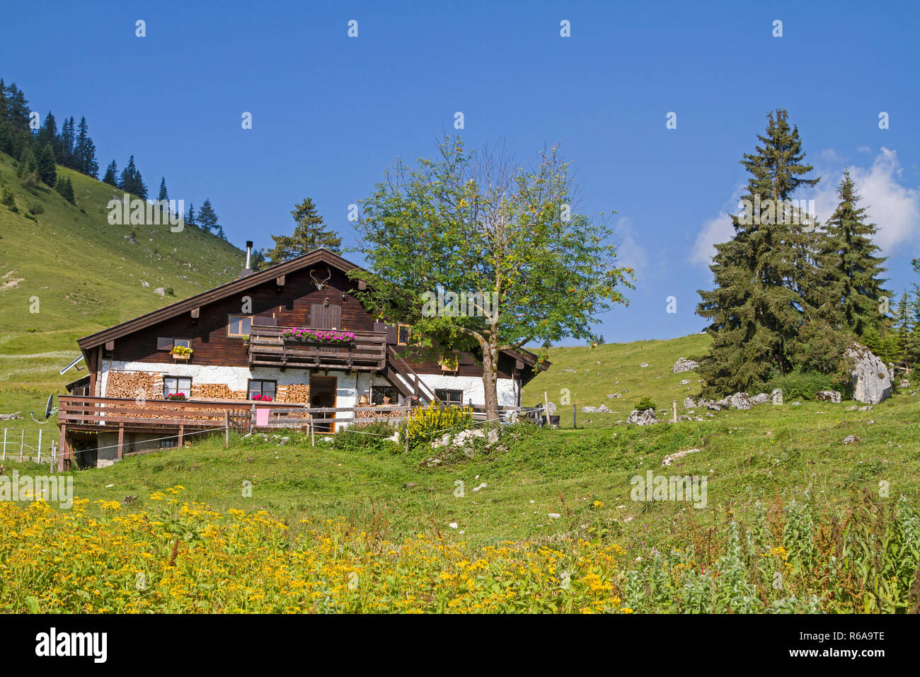 The Idyllic Grabenbergalm Are Located In The Tyrolean Part Of The Mangfall Mountains Near The Well-Known Ackernalm - Stock Image