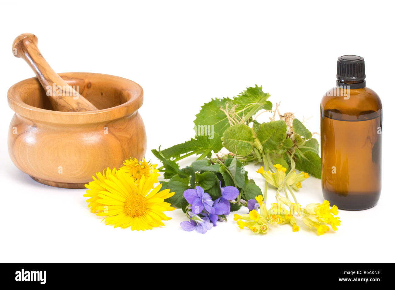 Different Medical Herbs With Mortar And Pestle Near Medicine Bottle - Stock Image