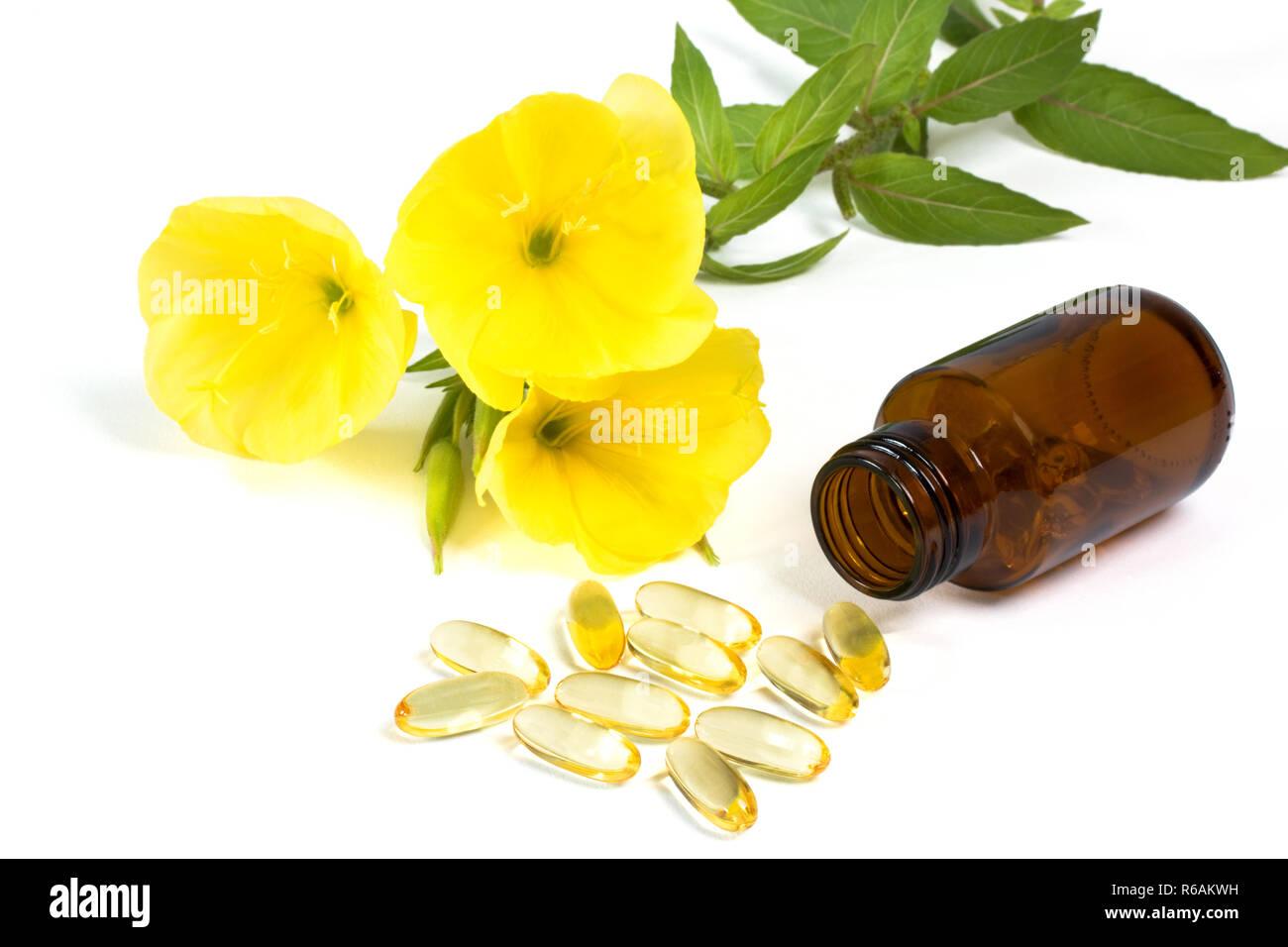 Gelatin Capsules With Evening Primroses And Medicine Bottle On White Background Stock Photo