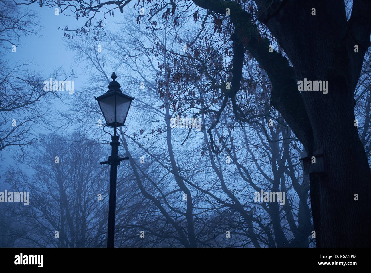 A traditional gas lamp stands surrounded by fog unlit against a back drop of trees in winter - Stock Image