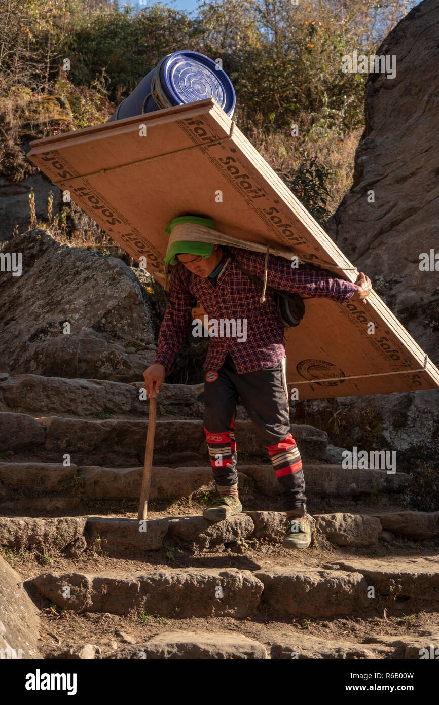 Nepal, Lukla, Chheplung, porter carrying heavy load of plywood descending path of stone steps - Stock Image