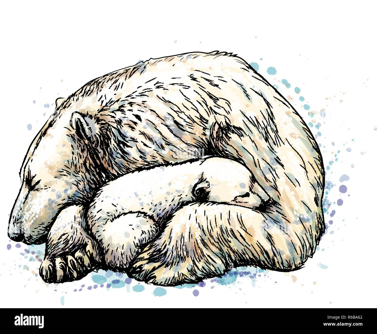 Polar Bear With Cub From A Splash Of Watercolor Hand Drawn