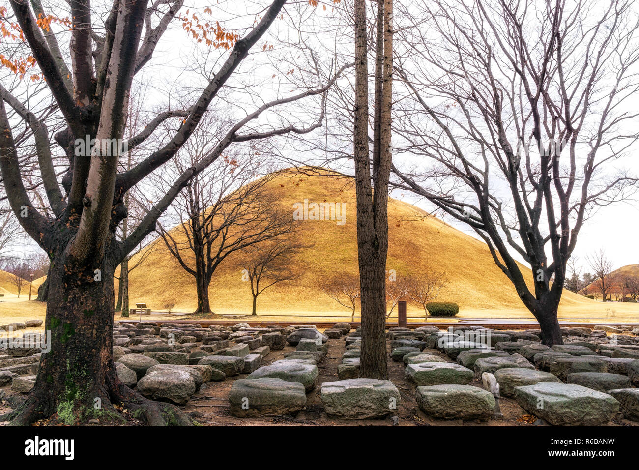 royal mounds excavation site Stock Photo