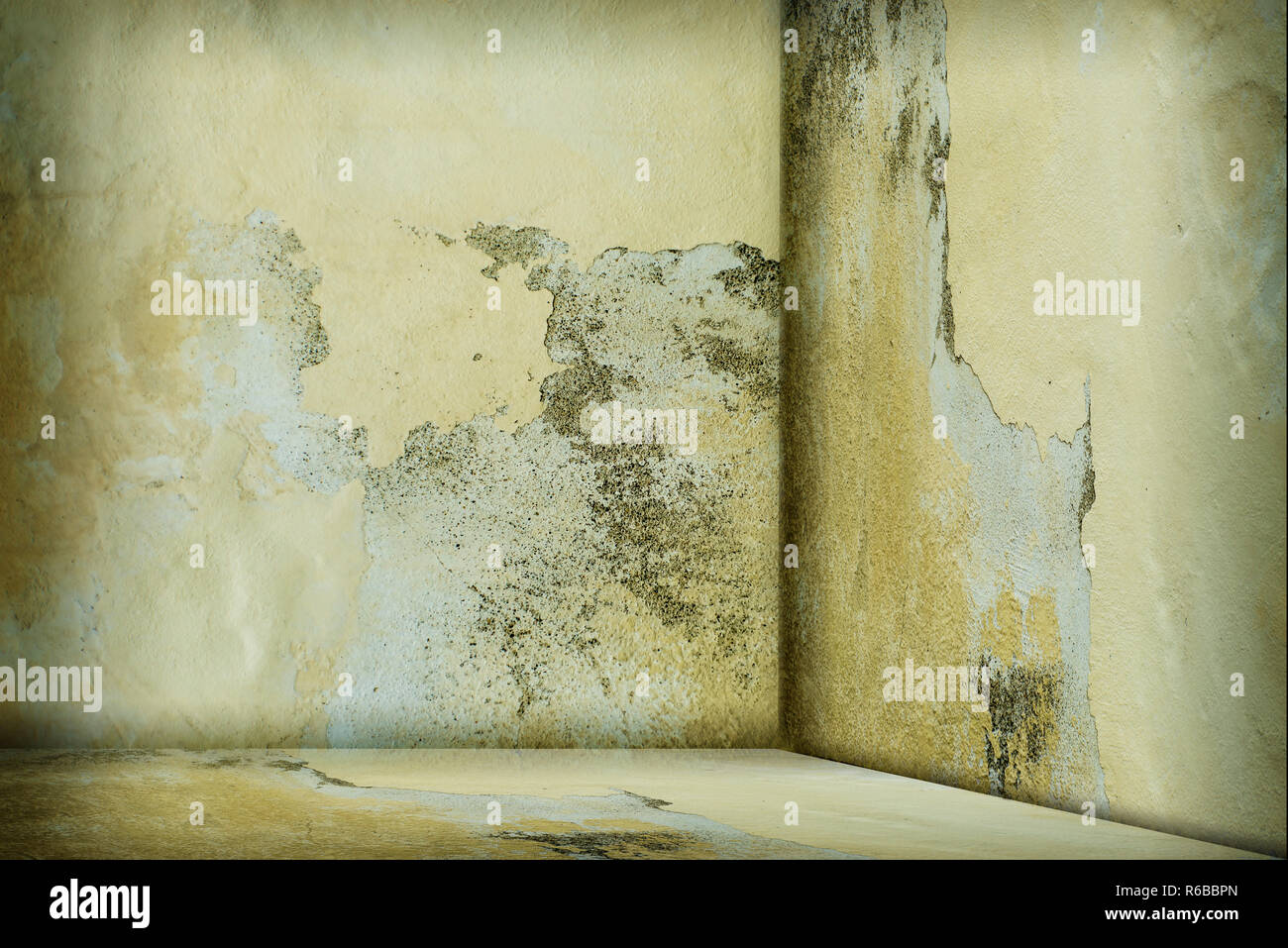 Empty Room With Dirty Wall - Stock Image