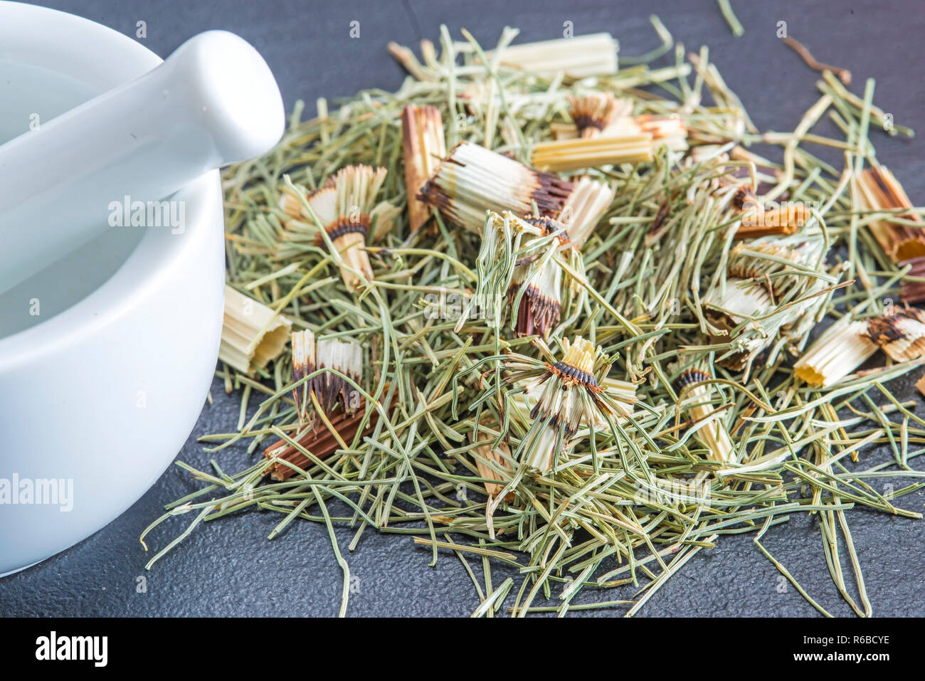 Horse'S Tail, Equisetum Arvense, Medicinal Plant Stock Photo
