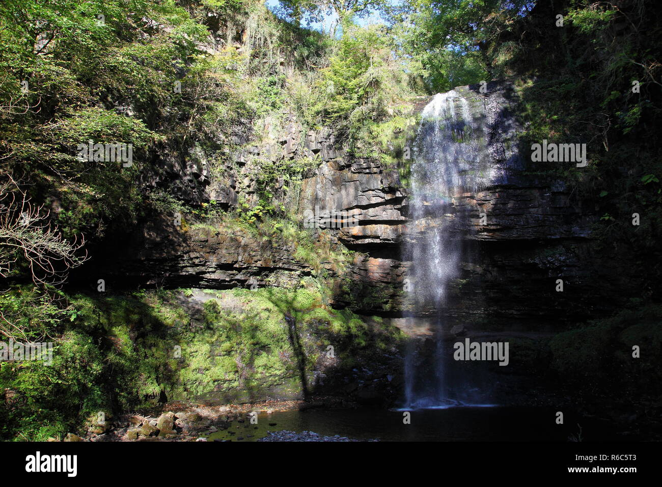 Henrhyd Falls, with a 90ft.fall, these are the tallest waterfalls in South Wales, located in the Brecon Beacons N.P. in Powys - Stock Image