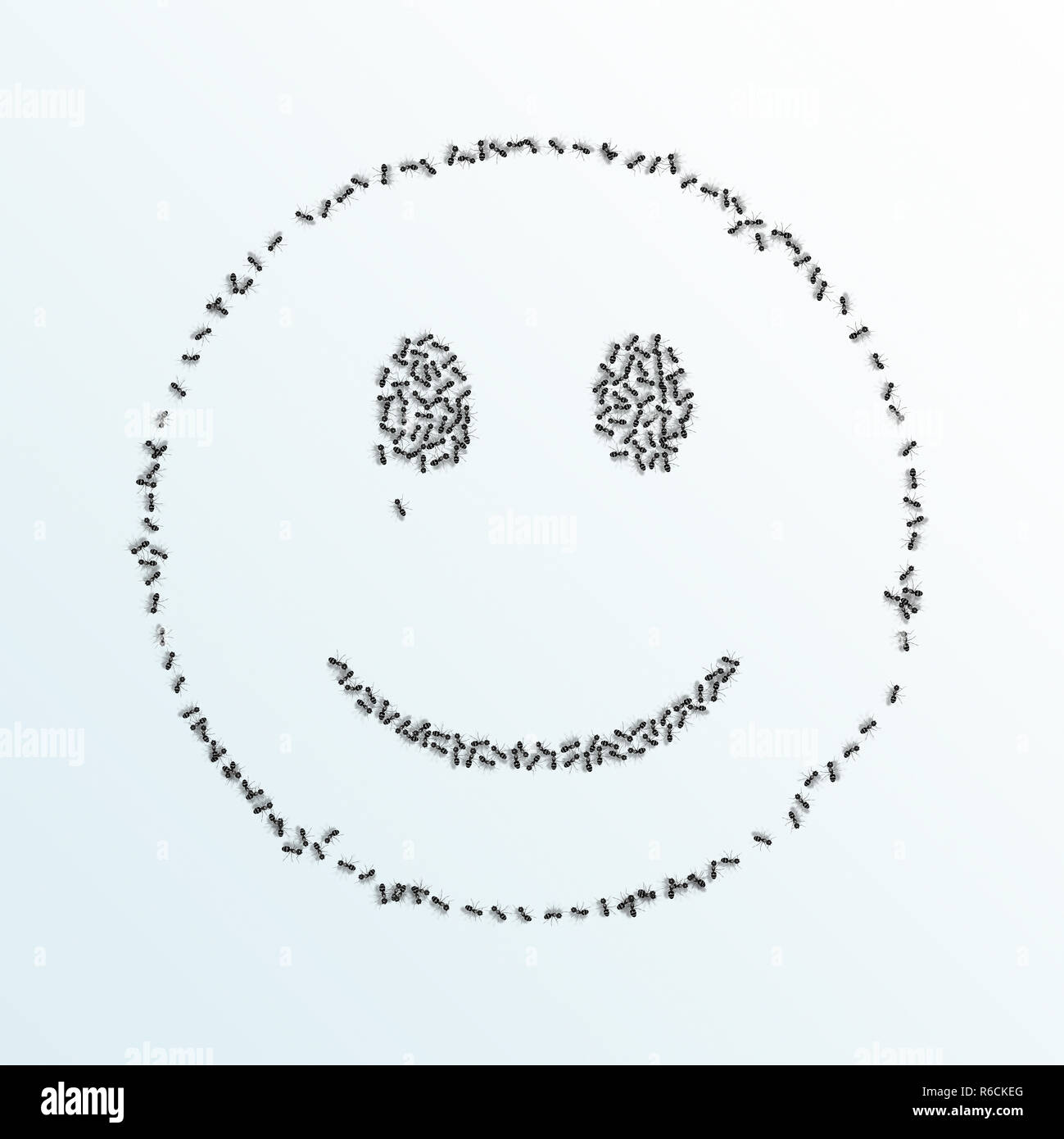Monochrome digital image of ants forming an outline of a smiley face on a white background - Stock Image