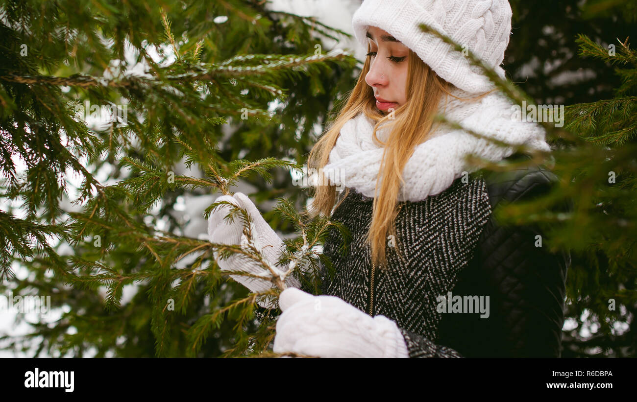 young woman in a forest with fir and pine trees on the street, hands touch the branches of trees, considering them. peridium winter, warm clothes, knitted mittens and scarf white - Stock Image